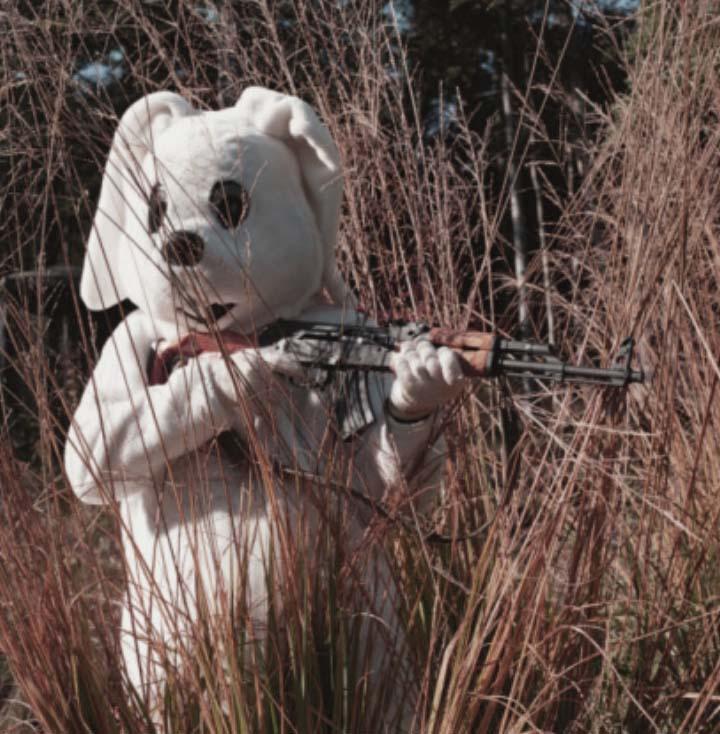 BREAKING:  Rabbits Found at Bottom of RabbitHole
